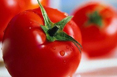 Помидоры: польза и вред сочных плодов томата