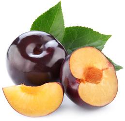 Полезные для организма фрукты - сливы: польза и вред