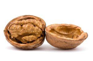 Грецкий орех — польза и вред для организма человека