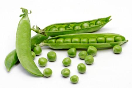 Зелёный горох: польза и вред полезнейшего овоща